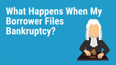 Borrower-Files-Bankruptcy